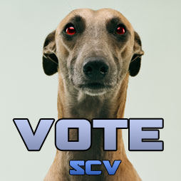 avyVOTE.png